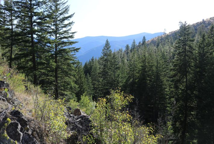 Lot 2 Mclaughlin Creek Road, Paradise, MT 59856
