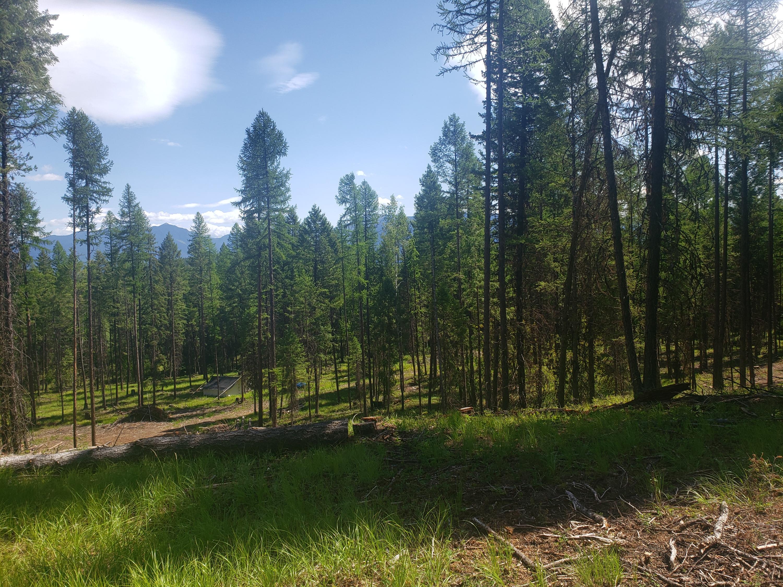 Nhn Marl Lake Road, Fortine, MT 59918