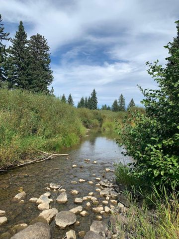Nhn Fortine Creek Road, Trego, MT 59934