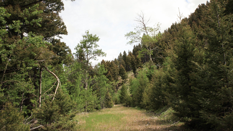 0 High Ore (Florence Lode) Road, Boulder, MT 59632