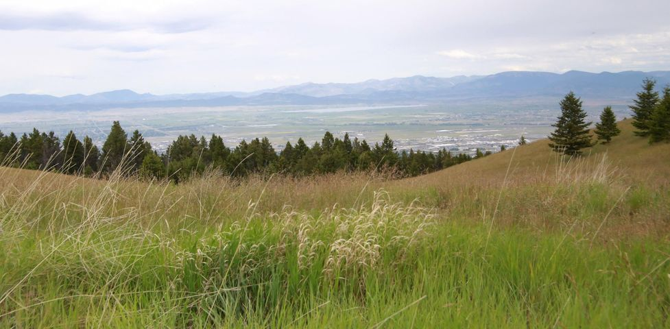 Tbd Alpine Meadows Lot 23, Clancy, MT 59634