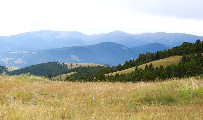 Tbd Holmes Gulch Road Alpine Meadows, Helena, MT 59601