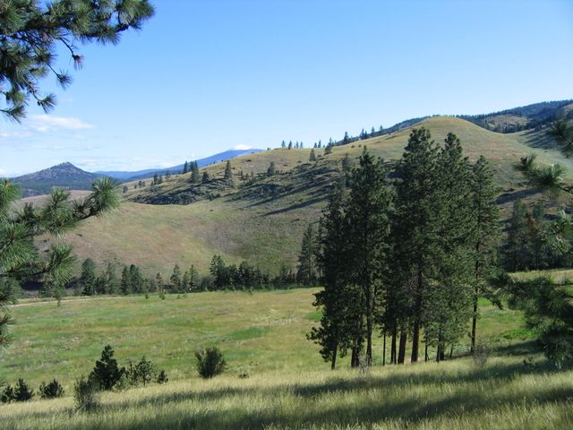 Nhn Deemer Creek Road, Plains, MT 59859