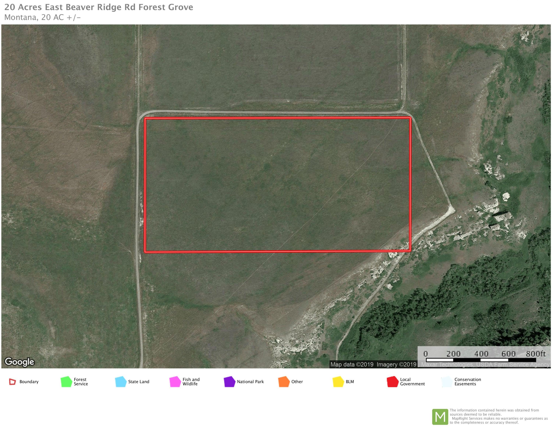 20 Acres E Beaver Ridge Road, Forest Grove, MT 59441