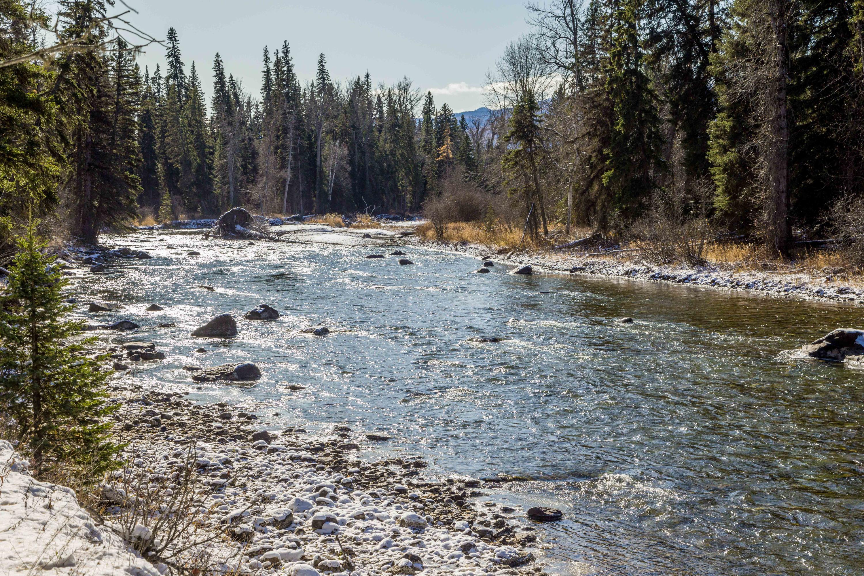 Nhn Fatty Creek, Swan Lake, MT 59911