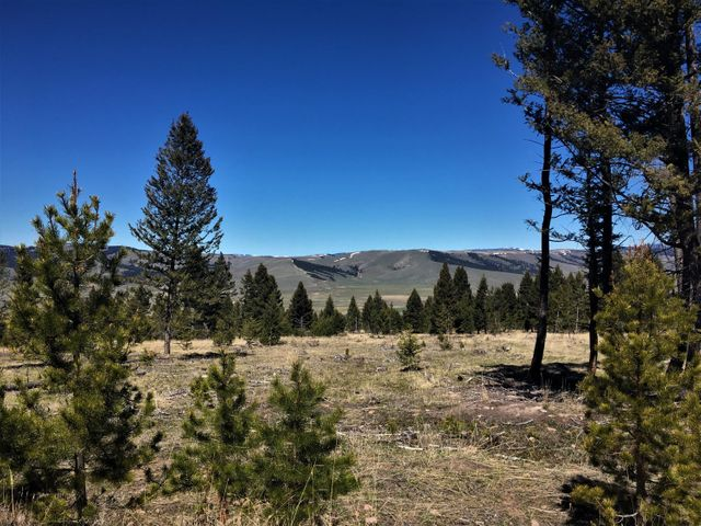 Lot 29 Arrowstone, Philipsburg, MT 59858