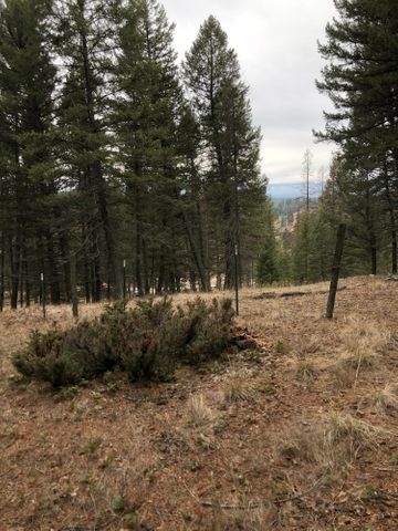 177 Forest Loop, Fortine, MT 59918