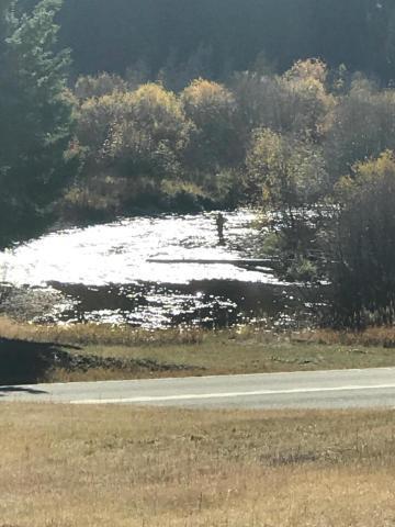 1550 E East Fork Road Road, Sula, MT 59871