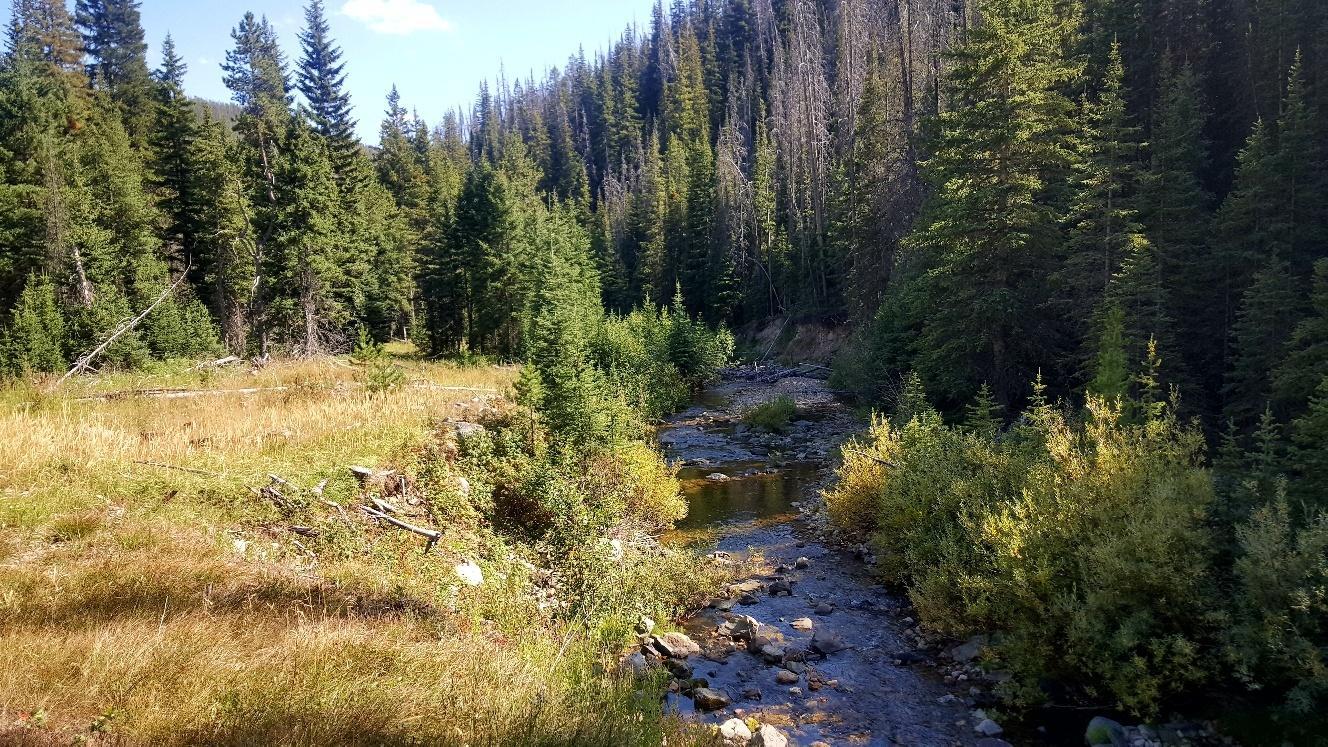 Basin Creek Road Forrest Park # 15, Basin, MT 59006