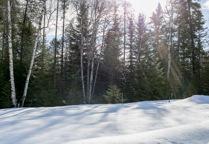721-723 Icehouse Road Lots 12a And 12b, Whitefish, MT 59937