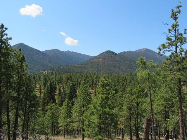 91 Woods Creek Road, Wolf Creek, MT 59648