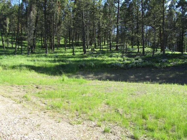 Lot 7 Upper Whitetail Drive Tract #7, Helmville, MT 59843