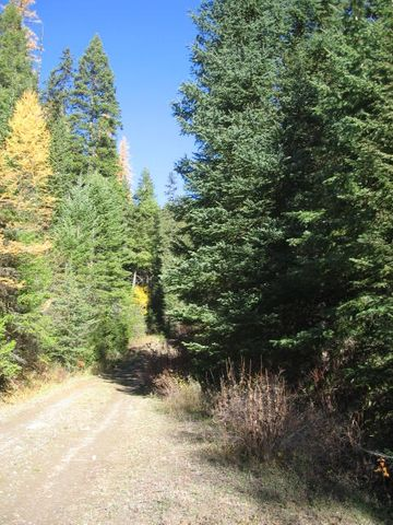 Tbd Sleeman Gulch, Lolo, MT 59847