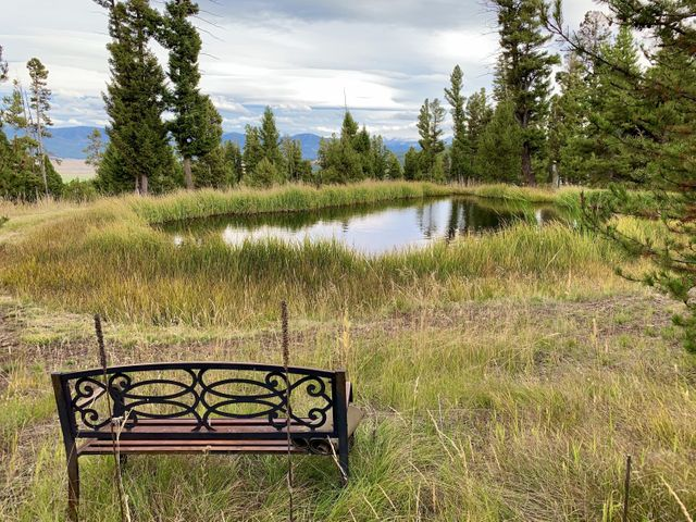 Tbd Grey Owl Road, Philipsburg, MT 59858