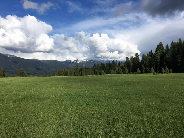 Lot 17 Three Corners Road S, Trout Creek, MT 59874