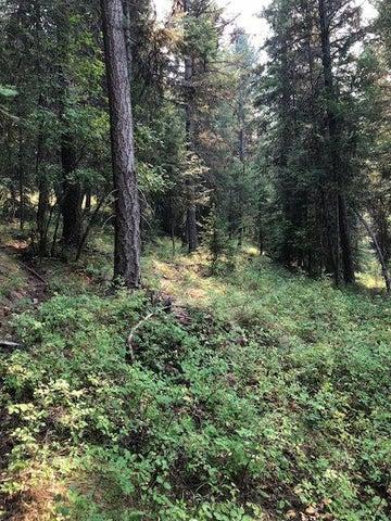 Nhn Fortine Creek Road, Trego, MT 59934