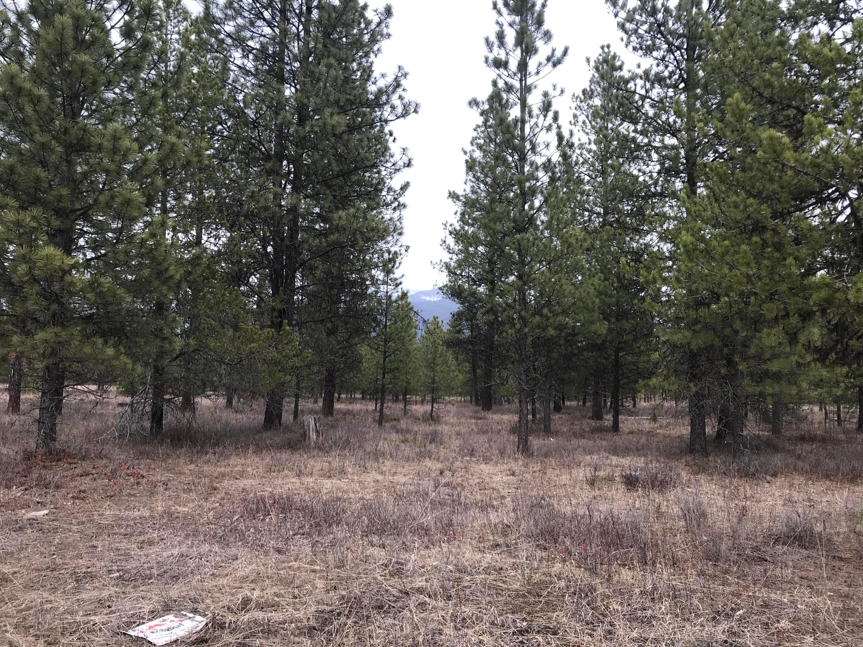Nhn Deer Run Road, Trout Creek, MT 59874