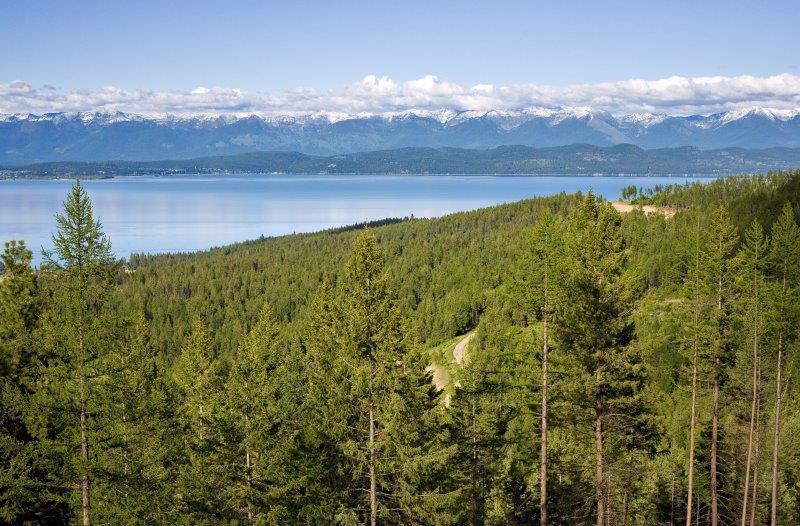 1236 Alpenglow Drive, Lakeside, MT 59922