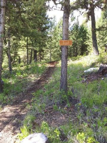 794 Yelping Coyote Run, Trego, MT 59934