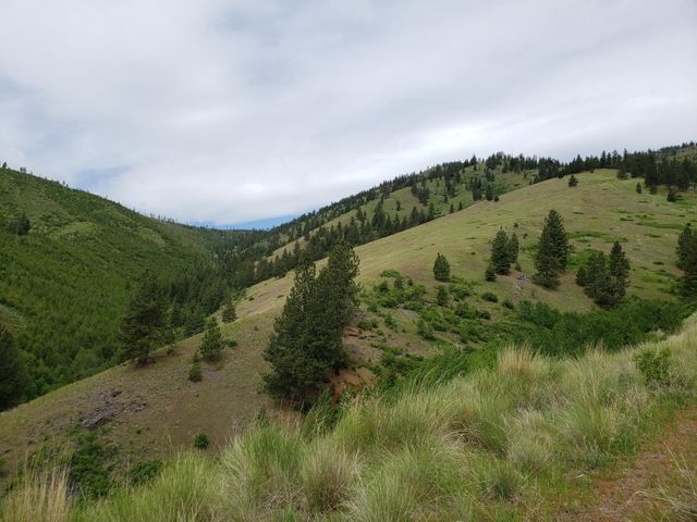 Nhn Mclaughlin Creek Road, Paradise, MT 59856