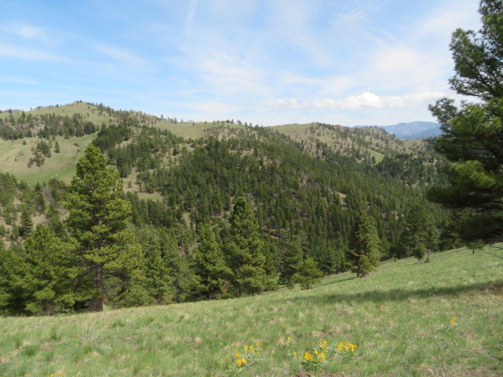 121 Upper Andy Creek Road, Cascade, MT 59421