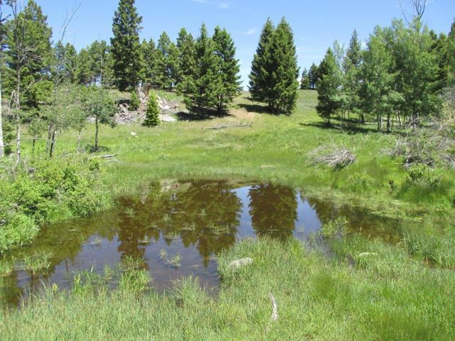1st Resort Perkins Gulch Road, Anaconda, MT 59711