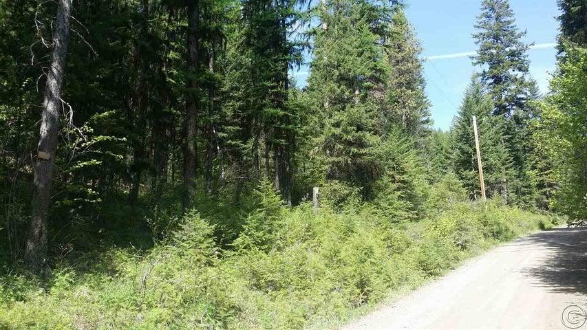 135 W Mountain Creek Road, Alberton, MT 59820