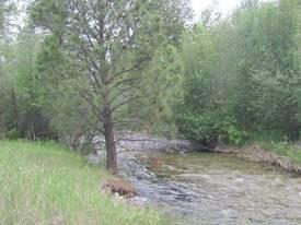 196 Pine Drive, Victor, MT 59875