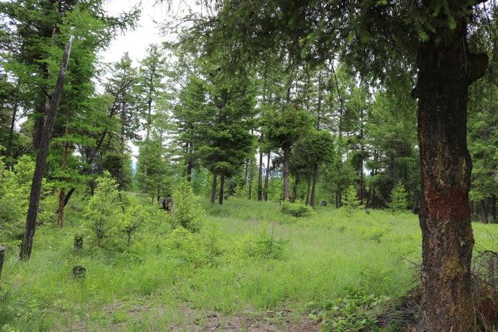 505 Buffalo Trail, Somers, MT 59932
