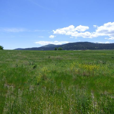 Lot 4 Haven Heights Road, Missoula, MT 59808