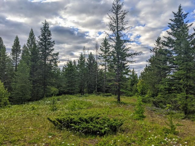 402 Morning Sky Drive, Trego, MT 59934