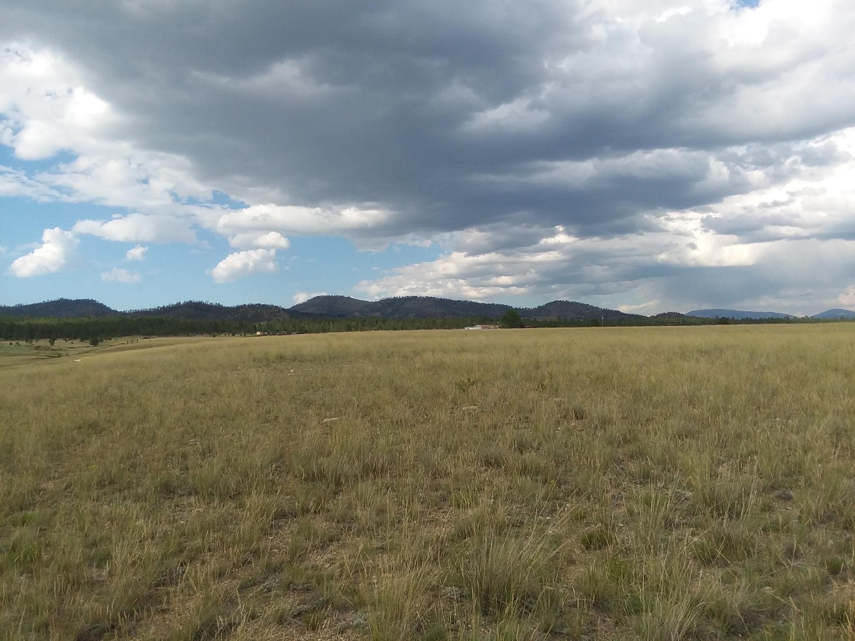 2424 Tea Road, Helena, MT 59602