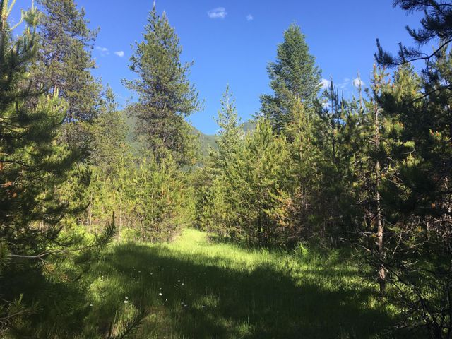 Lot 10+12 Triple J Loop, Trout Creek, MT 59874