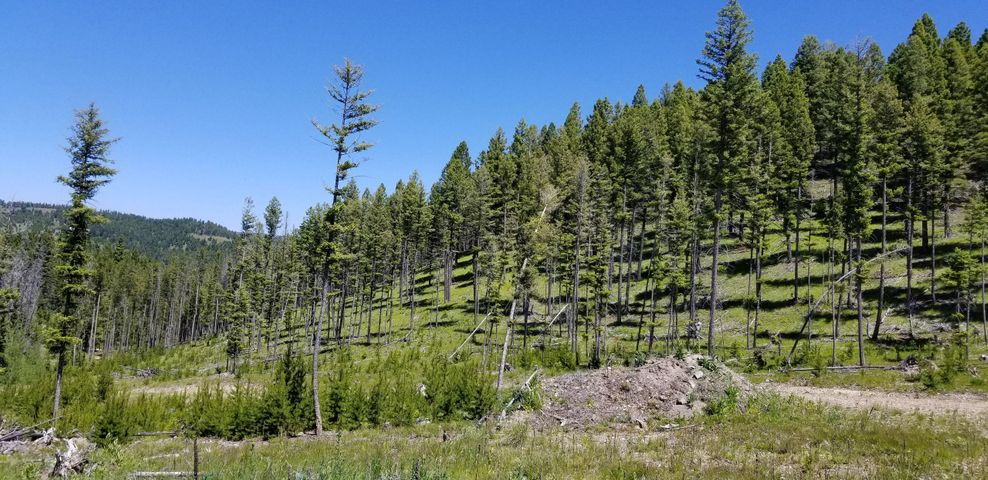 What a great hunting camp/mountain retreat! Elk, Mule Deer, Bear, Mountain Lion, Coyotes. Incredible privacy. Huge 300X400 pad has been leveled for a large home/homestead.  Partially insulated 12x20 cabin and a 10x10 Shed already on the property.  Year around creek runs along Twin Peaks Rd and undeveloped spring is on the property.  Call Greg Selmon at 406-750-2108, or your real estate professional.