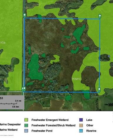 Wetland Mapper Aerial
