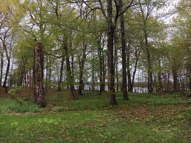 Beautiful wooded, level lakeshore lot