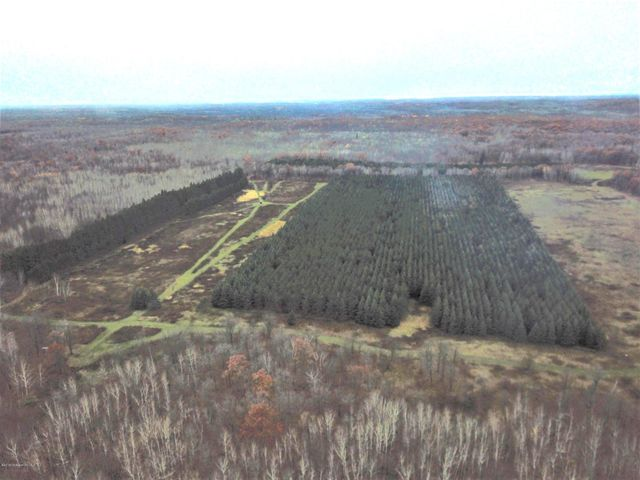 Tbd Cherry Lane Road, Ogema, MN 56569