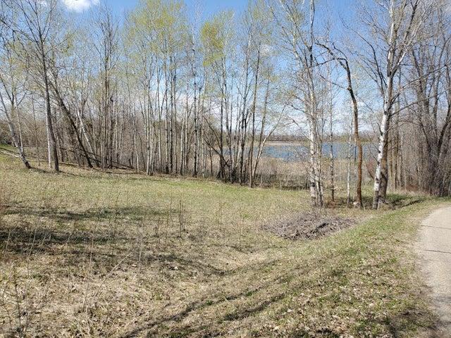Tbd E Arrow Lake Road, Audubon, MN 56511