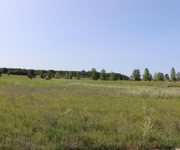 1386 Long Lake Drive