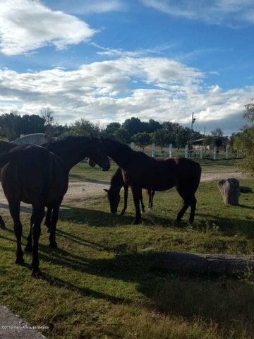 Terreno Queretaro>Corregidora>Canadas del Arroyo - Venta:510.720 Pesos - codigo: 19-999