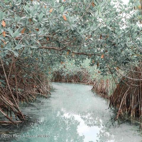 Terreno Yucatan>Merida>Pueblo Sisal - Venta:329.084 Pesos - codigo: 21-1255