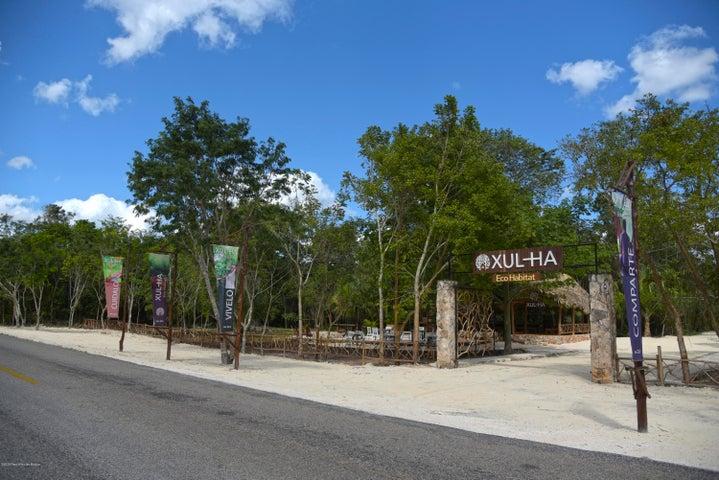 Terreno Quintana Roo>Puerto Morelos>Ruta de los Cenotes - Venta:679.700 Pesos - codigo: 21-3559