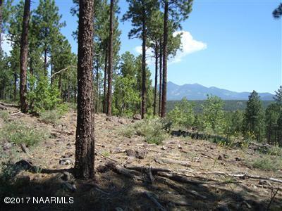 4460 S Saddle Horn, Flagstaff, AZ 86005