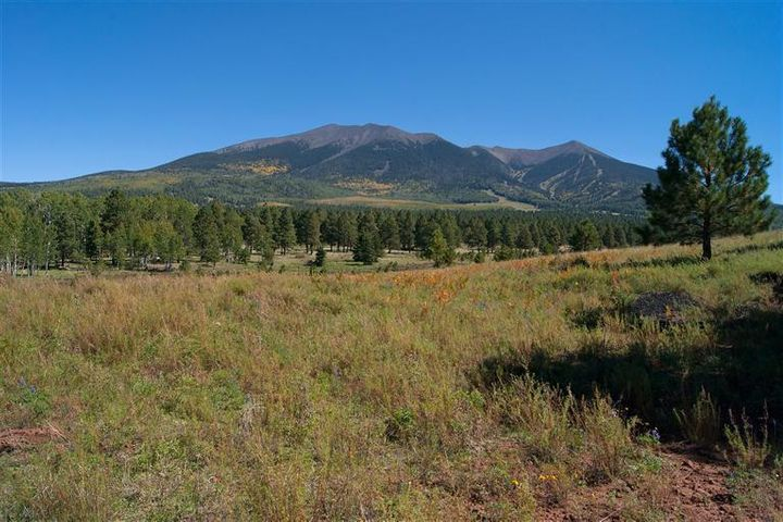 0 Hart Prairie Road Off Fsr 151 Road, Flagstaff, AZ 86001