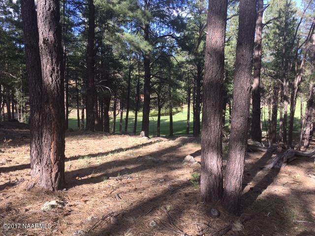 487 - 2619 Lindberg Spring, Flagstaff, AZ 86005