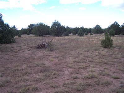1805 W Cumberland Parcel F Road, Ash Fork, AZ 86320