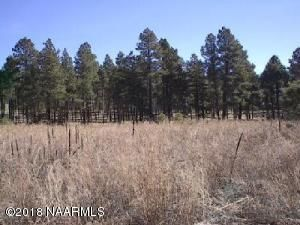 2700 N Fort Valley Road, Flagstaff, AZ 86001