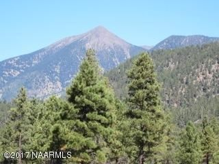 469 E Hattie Green, Flagstaff, AZ 86001