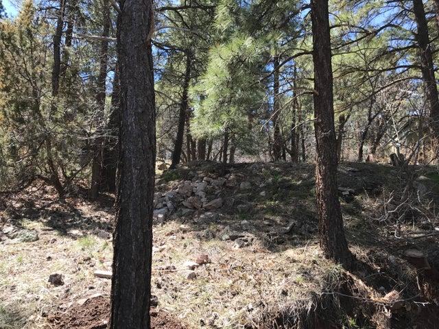 1721 E Mountain View Avenue, Flagstaff, AZ 86004