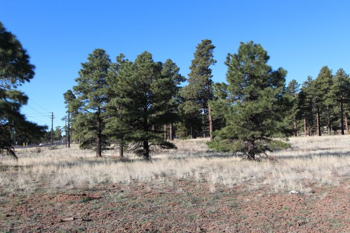 5756 E Sunset Drive, Flagstaff, AZ 86004
